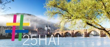 Bild der alten Brücke in Heidelberg mit dem Schriftzug #25HAI in der linken unteren Ecke